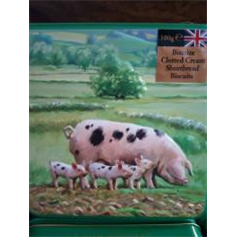 Biscuits - Grandma Wilds Biscuits Pigs Tin (100g)